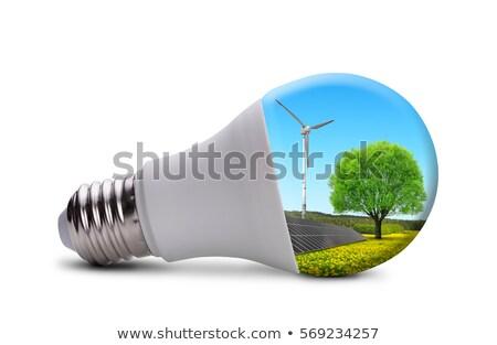 Painel lâmpada isolado branco estúdio fotografia Foto stock © boroda