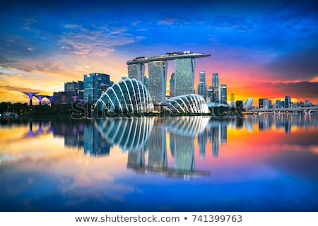 Singapore in the morning Stock photo © joyr