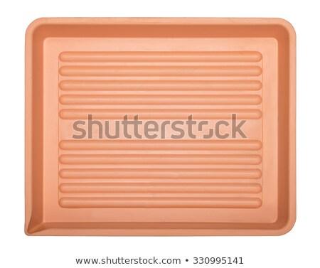 developing tray Stock photo © nito