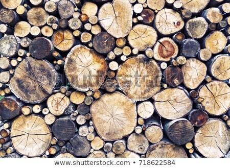 keresztmetszet · Buenos · Aires · tűzifa · textúra · fal · absztrakt - stock fotó © cosma