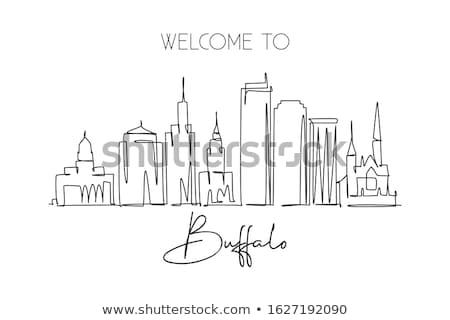 Buffalo Skyline Stock photo © brm1949