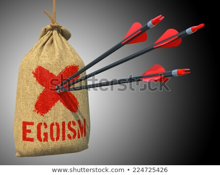 Egoism - Arrows Hit in Red Mark Target. Stock photo © tashatuvango