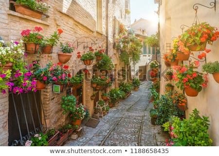 toscana · paisagem · panorama · cidade · colina · Itália - foto stock © joyr