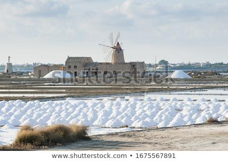Saltworks of Trapani, Sicily, Italy. Stock photo © Photooiasson