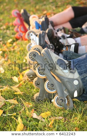 row of roller legs on the grass 2 Stock photo © Paha_L