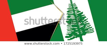 Egyesült Arab Emírségek Norfolk sziget zászlók puzzle izolált Stock fotó © Istanbul2009