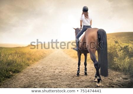 cavalo · paisagem · cavalos · nuvens · grama · natureza - foto stock © bbbar