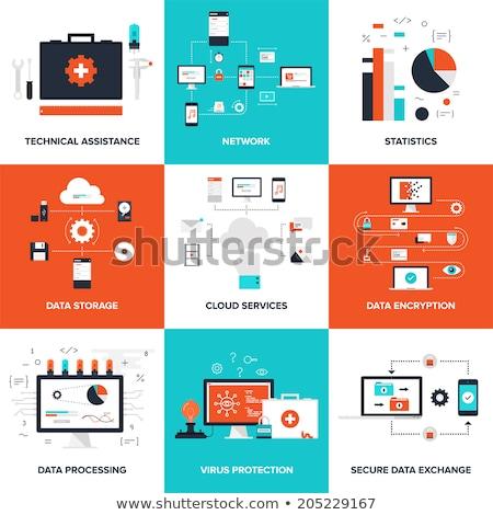 cloud secure storage icon flat design stock photo © wad