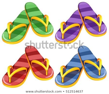 четыре · различный · цветами · лет · пляж · вектора - Сток-фото © bluering
