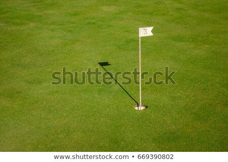 Glof flag on a green with fairway Stock photo © njnightsky