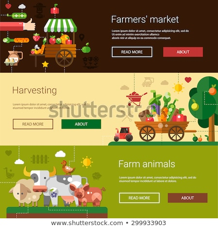 postcard template of modern flat design farm and agriculture ico stock photo © decorwithme