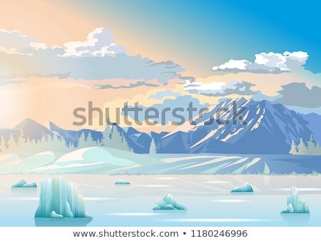 Hideg tél tengeri kilátás kék tenger víztükör Stock fotó © stevanovicigor