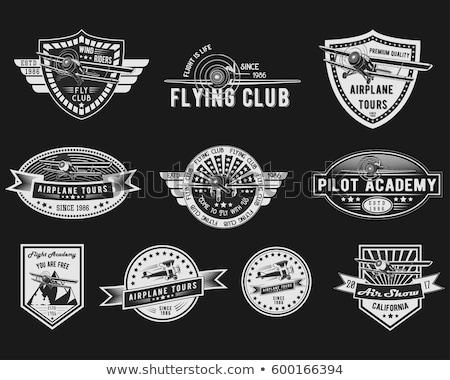 Color vintage Aviation emblem Stock photo © netkov1