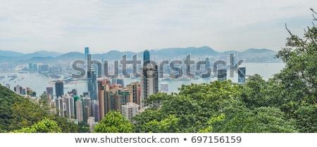 Big panorama of Hong Kong skyline. View from Victoria Peak Stock photo © galitskaya