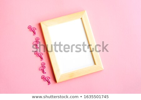 Flamingo ver carta mar adesivo Foto stock © barsrsind