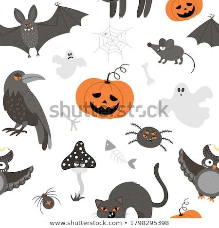 フクロウ クモ バット ウェブ 背景 ストックフォト © ShustrikS