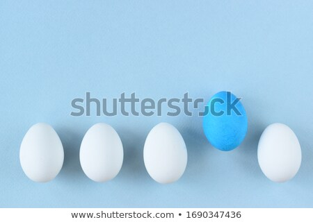 Eggs in a row, isolated on white background Stock photo © experimental