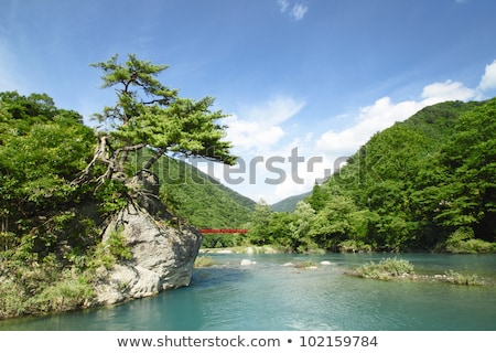 ravine  Dakikaeri in Akita Stock photo © yoshiyayo