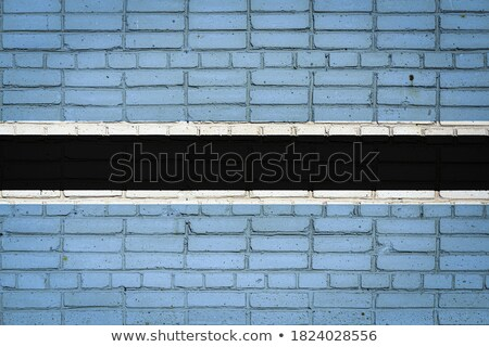 Flag of Botswana on brick wall Stock photo © creisinger