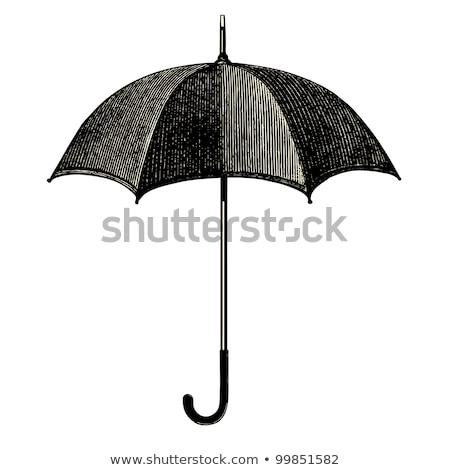 vintage umbrella stock photo © stocksnapper