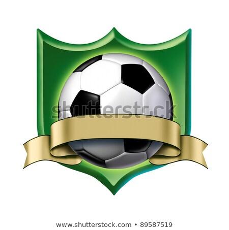 Futball címer díj arany címke mutat Stock fotó © Lightsource