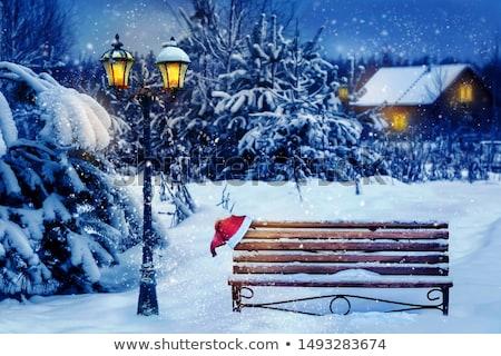 Bank sneeuw houten tuin bos achtergrond Stockfoto © trgowanlock