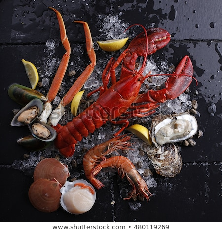 assortment of crustacean Stock photo © M-studio