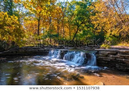 Waterfall In A Glen Stock photo © brm1949