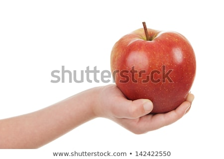 red apple in the childrens hands isolated on white background stock photo © g215