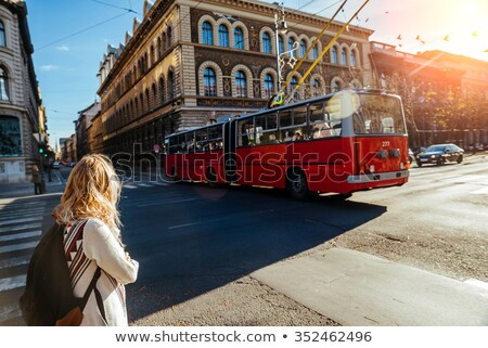 Overview of Budapest on a cloudy day Stock photo © AndreyKr