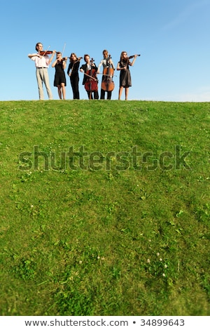group of musicians play violins on hill against sky Stock photo © Paha_L