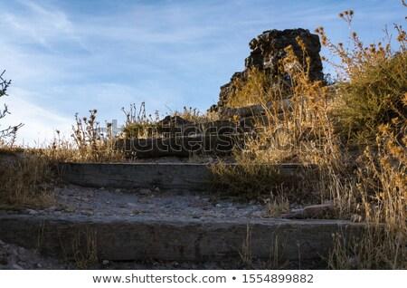 Château ruines usine peu profond ciel Photo stock © ndjohnston