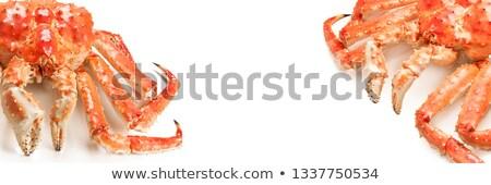large red king kamchatsky crab on white background stock photo © nasonov