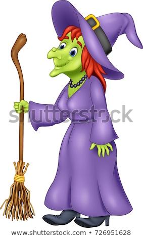 ведьмой метлой иллюстрация белый фон Сток-фото © bluering