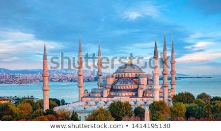 синий мечети ночь город Стамбуле Турция Сток-фото © artjazz