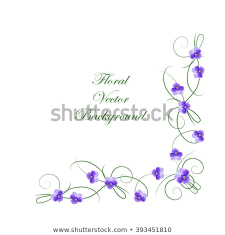 вектора · сирень · цветочный · иллюстрация · дизайна · закрывается - Сток-фото © robuart