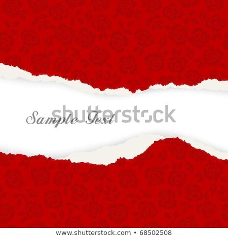 Kırmızı gül yırtık kağıt düğün doğa arka plan uzay Stok fotoğraf © Alexan66