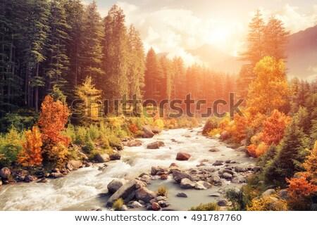 Sonbahar dağ vadi görmek dağlar Ukrayna Stok fotoğraf © wildman