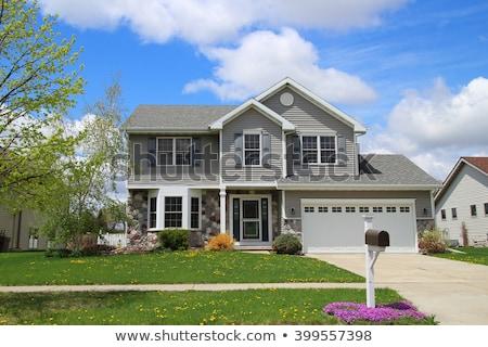 Casas suburbano luxo feliz Foto stock © davidgn
