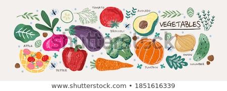 Broccoli Healthy Useful Food Vector Illustration Stock photo © robuart