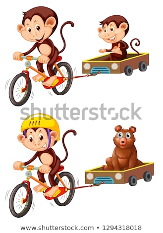 Monkey riding bicycle trailer Stock photo © colematt