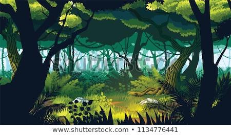floresta · magia · árvores · sem · costura · vetor · em · movimento - foto stock © Natali_Brill