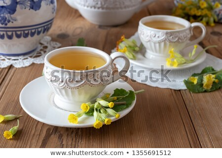 two cups of herbal tea with wild primula flowers stock photo © madeleine_steinbach