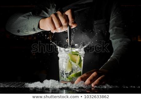 Bileşen hazır kokteyl kireç nane buz Stok fotoğraf © furmanphoto