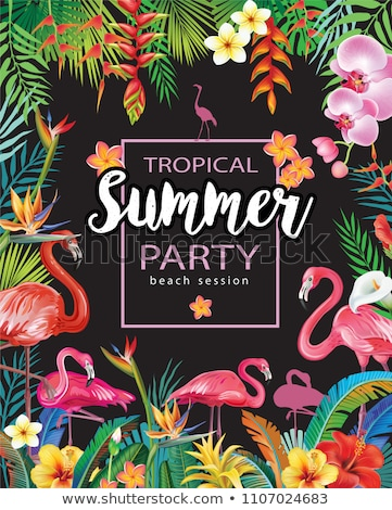 Tropical summer time banner of flamingo and plants Stock photo © cienpies