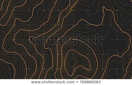 abstract orange contour lines background Stock photo © SArts