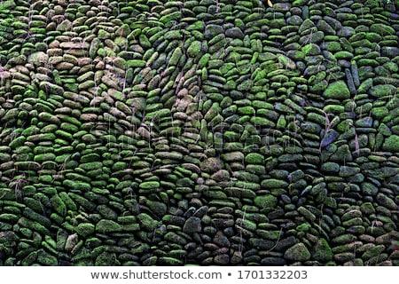 ストックフォト: テクスチャ · 古い · 石 · 苔 · バリ · スタイル