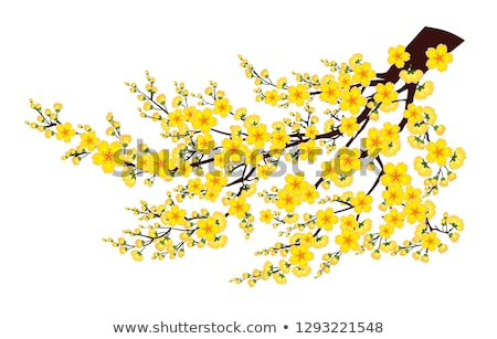 желтый · забор · трава - Сток-фото © imaster