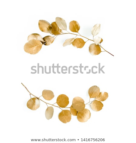 Wreath of golden leaves and branches Stock photo © blackmoon979