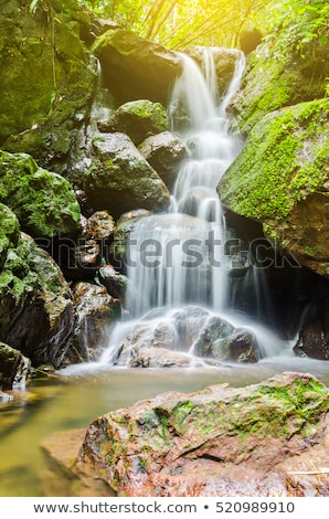 Waterfall in green forest Stock photo © olira